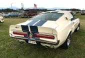 Sannolikt den del av Eriks 1967 Shelby GT 500, som man har störst chans att se en skymt av!