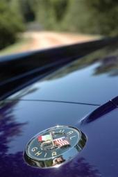 """Ett emblem som bekräftar """"blandäktenskapet"""" mellan USA och Italien."""